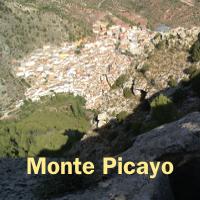 Botón Picayo